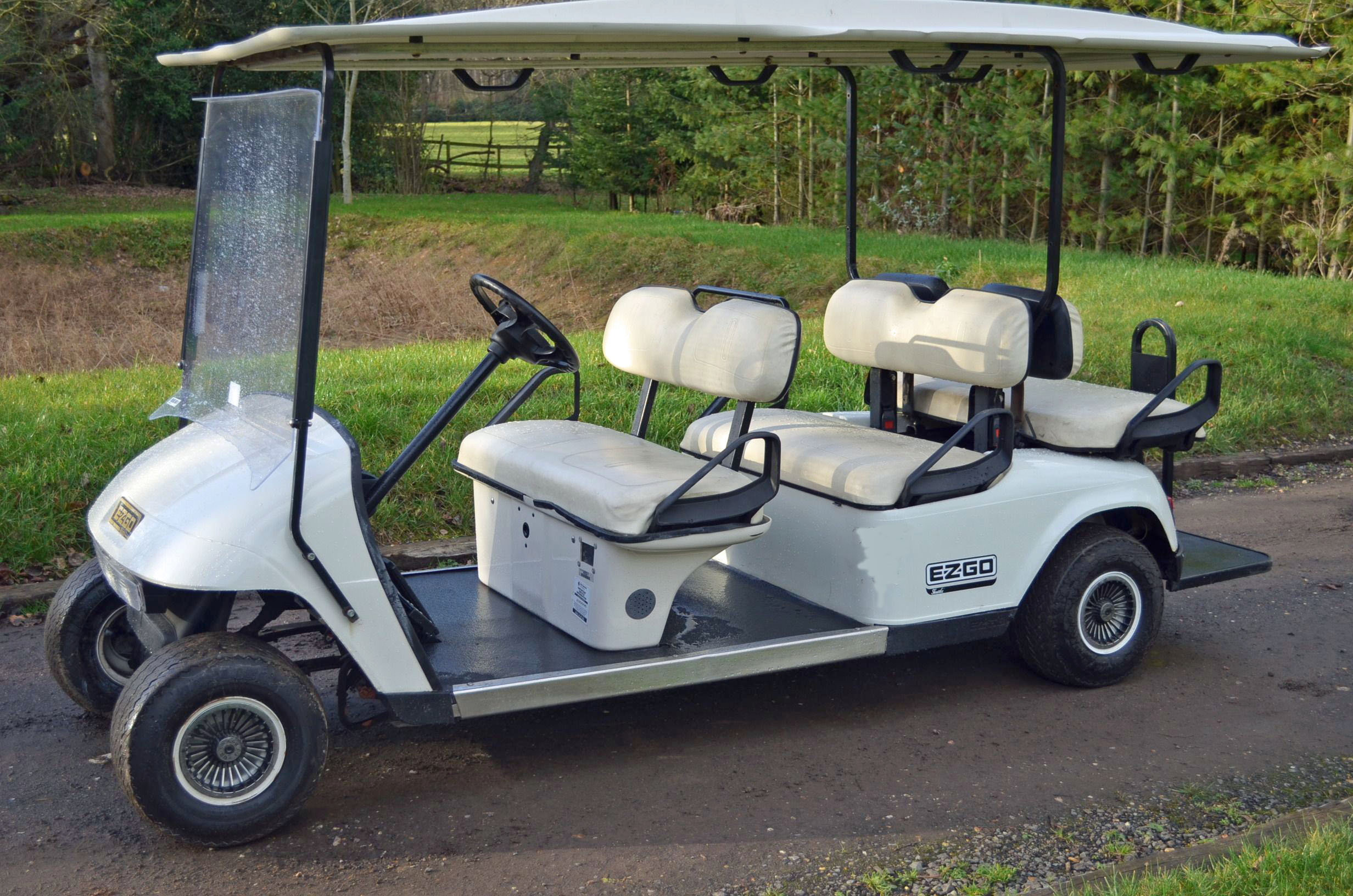 Golf Buggy Hire